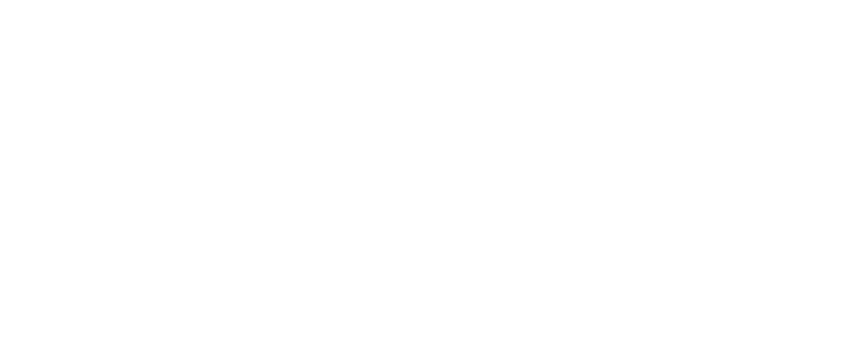 NISHGAKI GUITARS | Official Web Site